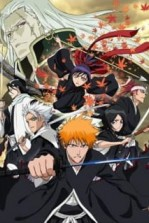 Poster anime Bleach Movie 1: Memories of NobodySub Indo